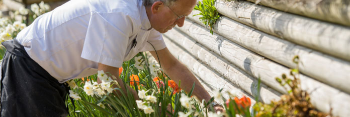 Chef Picking Flowers in Battlesteads Garden