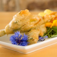 Battered Courgette Flowers